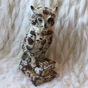 🆕Distressed Owl Figure